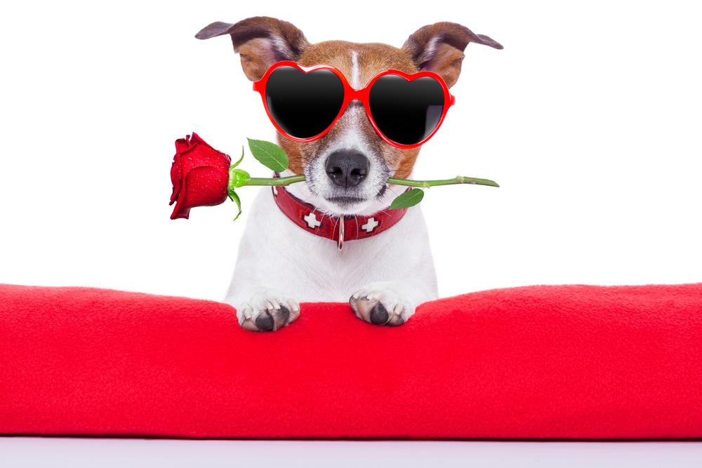 5 Romantic Getaways for Valentine's Day Weekend